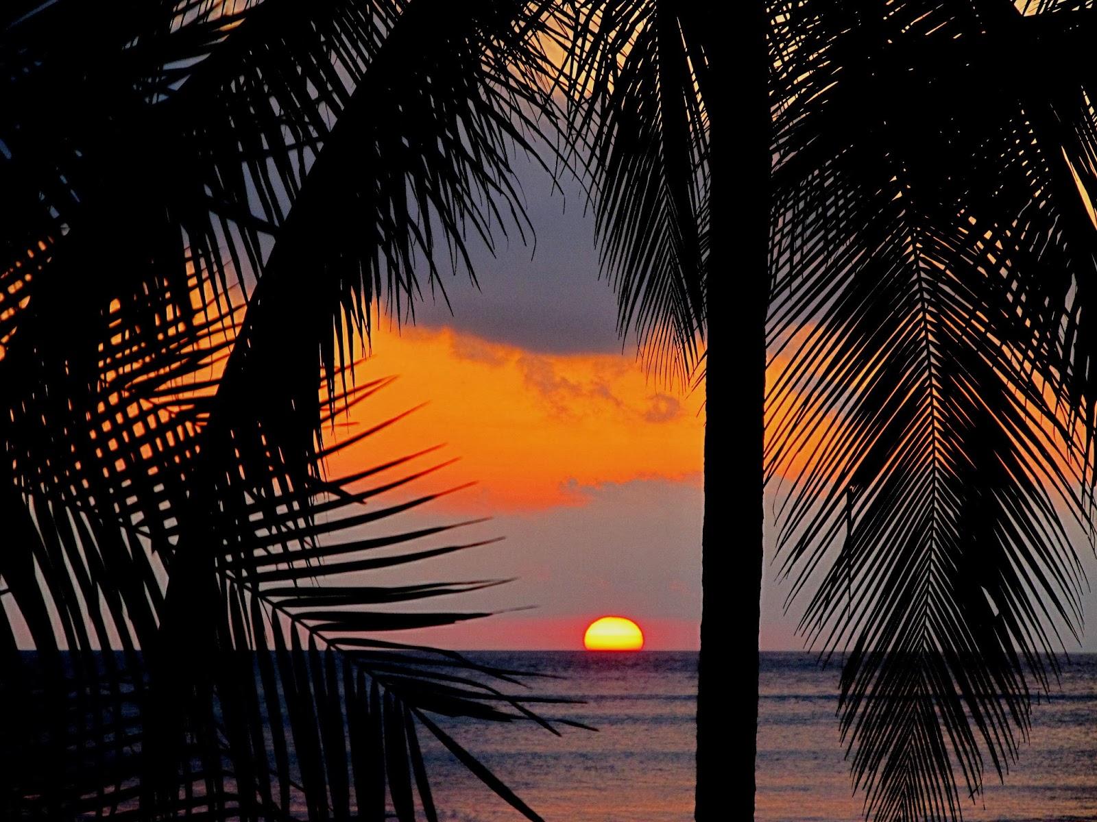 Costa Rica Jazz On The Beach