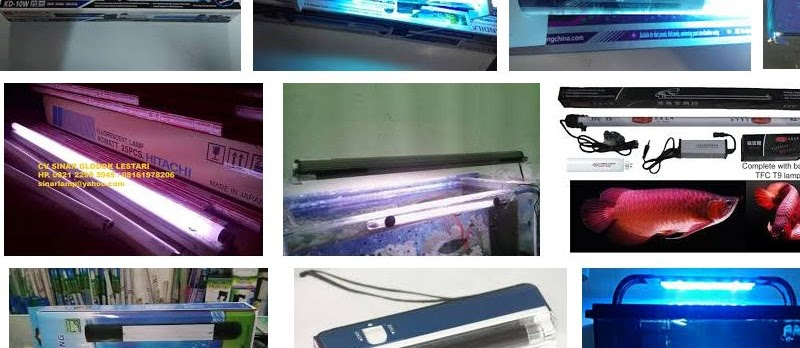 Harga Lampu UV Aquarium untuk Sekarang Ini