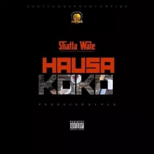 Ghana Music  :::  Shatta Wale – Hausa Koko (Prod. By PaQ)