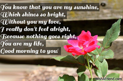 good morning messages:  you know that you are my sunshine, which shines