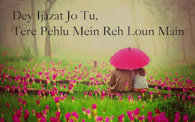 dear diary se images shayari and love quotes-13