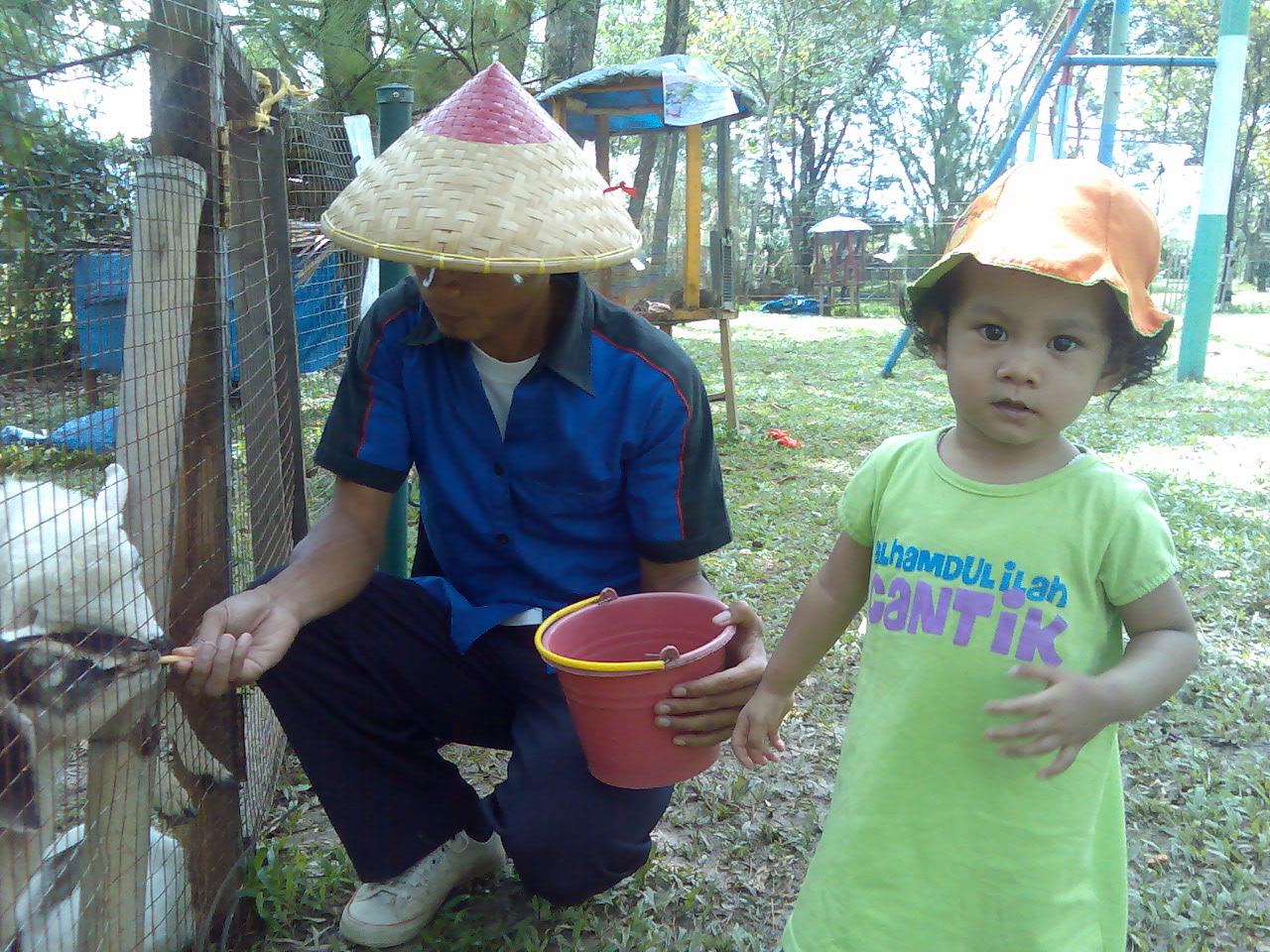 Blog Umar Azkiya Melihat Hewan Kecil Di Alam Fantasiana