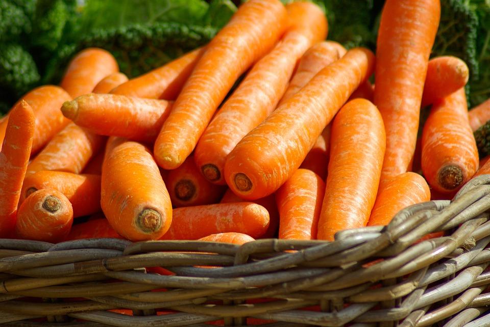 Cenouras numa cesta
