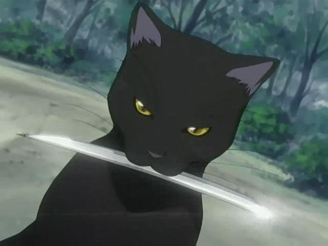 """OFF-Topic: """"Mudando de pau pra cavaco..."""" - Yusuke Urameshi - Página 4 Yoruichi_Shihouin_Cat"""