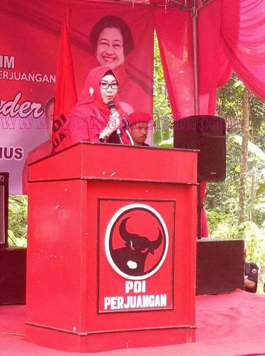 Pilbup Tanggamus, Sinyal PDIP Berlabuh Ke  Dewi Handajani