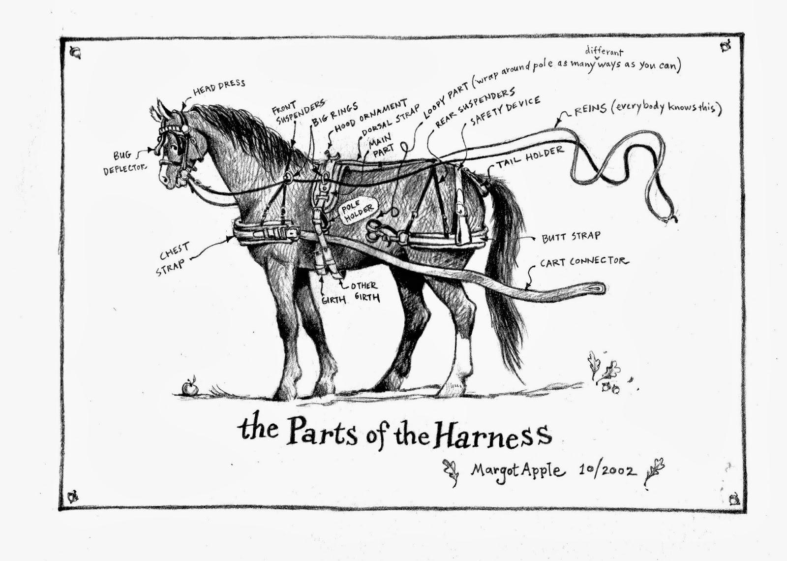 Harness Parts Names