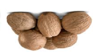 Nutmeg (Jaiphal) Spice Name in different Indian languages (regional)