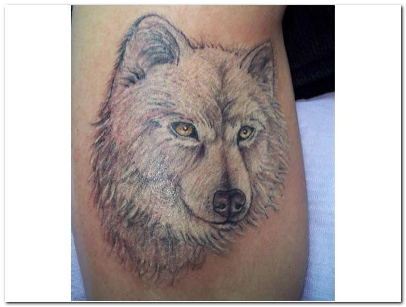 wolf%2btattoo%2bdesigns3