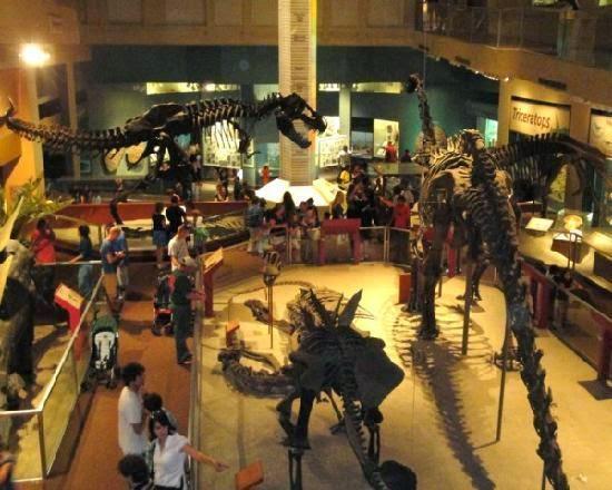 Washington Doğa Tarihi Müzesi