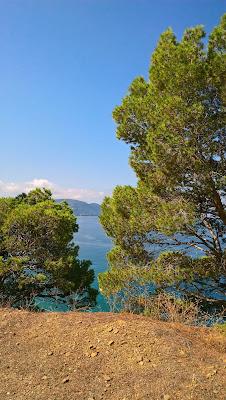 Mittelmeer Mediterranean Sea Naturschutzgebiet Kampanien