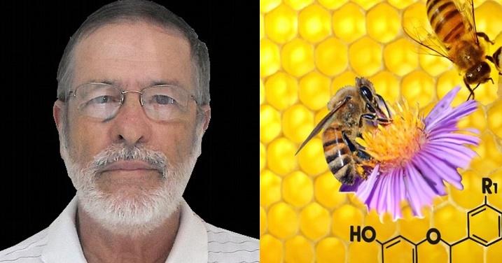 El biólogo Gilvan Barbosa Gama afirma que la ingesta de Propóleos ayuda a evitar las picaduras de mosquitos y por lo tanto evitaría enfermedades como el Zika o Dengue.