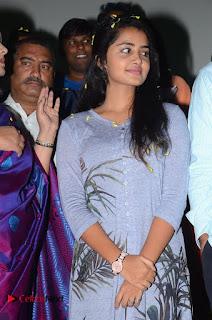 Shatamanam Bhavathi Platinum Disc Function Stills  0006.jpg