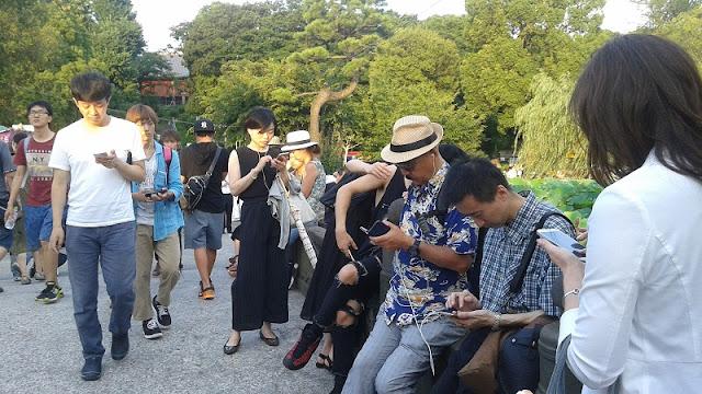 Personas en el Parque Ueno buscando a Pokemon