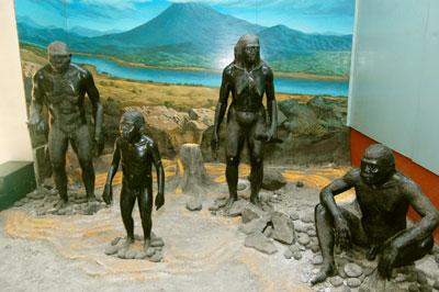 gambar manusia purba trinil ngawi jawa timur