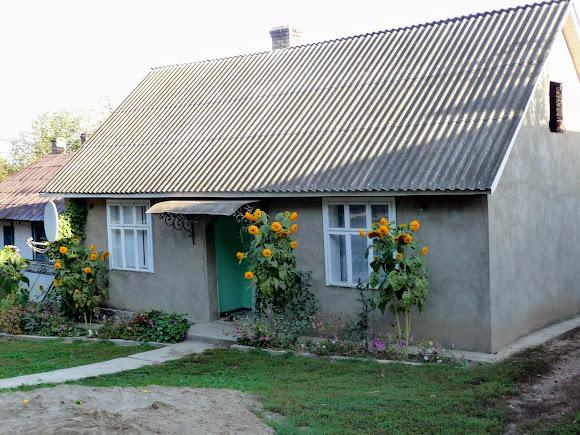 Великосілля, Герцаївський район. Буковинський будинок старого типу