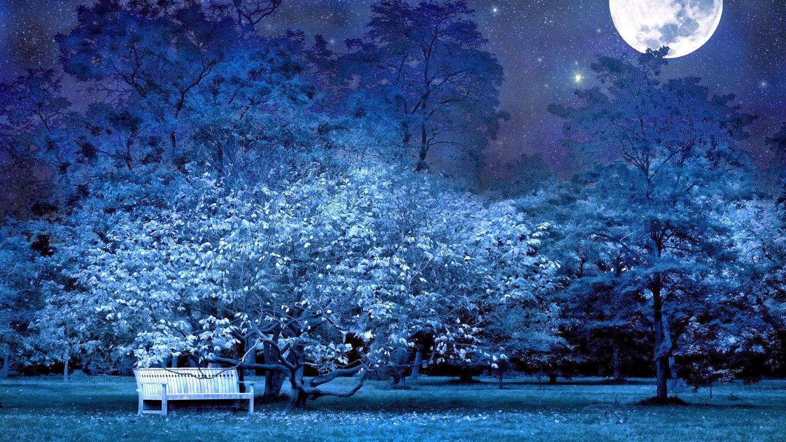 صور خلفيات ليلية جميلة