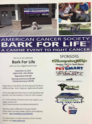 Bark For Life Owensboro Ky Flyer