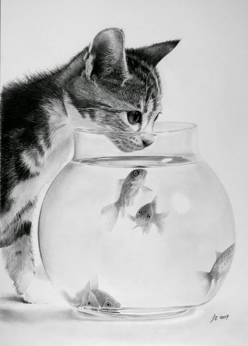 17-Kitten-WithFish-Franco-Clooney-Francoclun-www-designstack-co