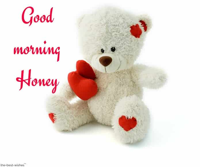 good morning honey with teddy bear