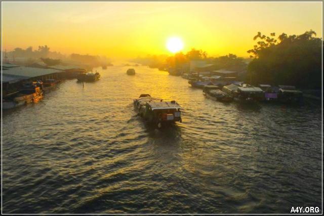 Chợ dừa trên sông Thom - An Thạnh - Mỏ Cày Nam