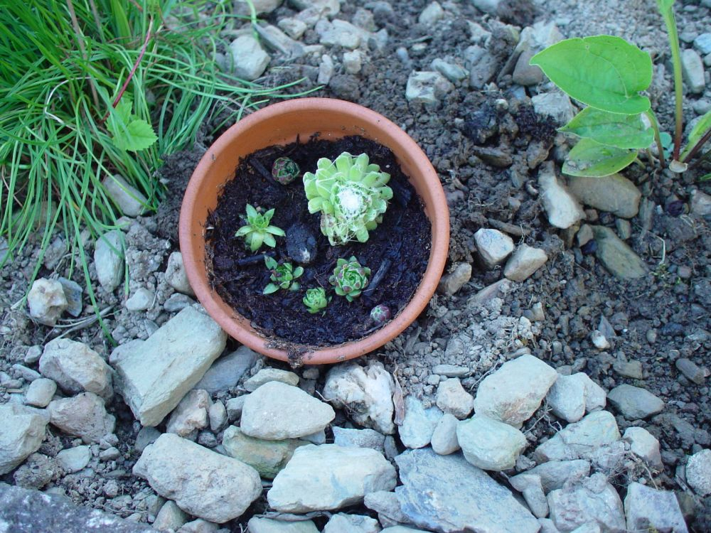 gartenbasteleien, Garten und bauen