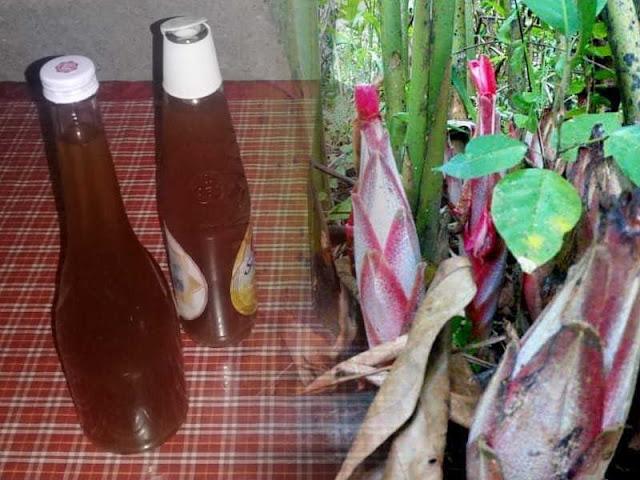 Meski Lestarikan Tradisi, Pengusaha Anggur Galoba Minim Perhatian Pemerintah