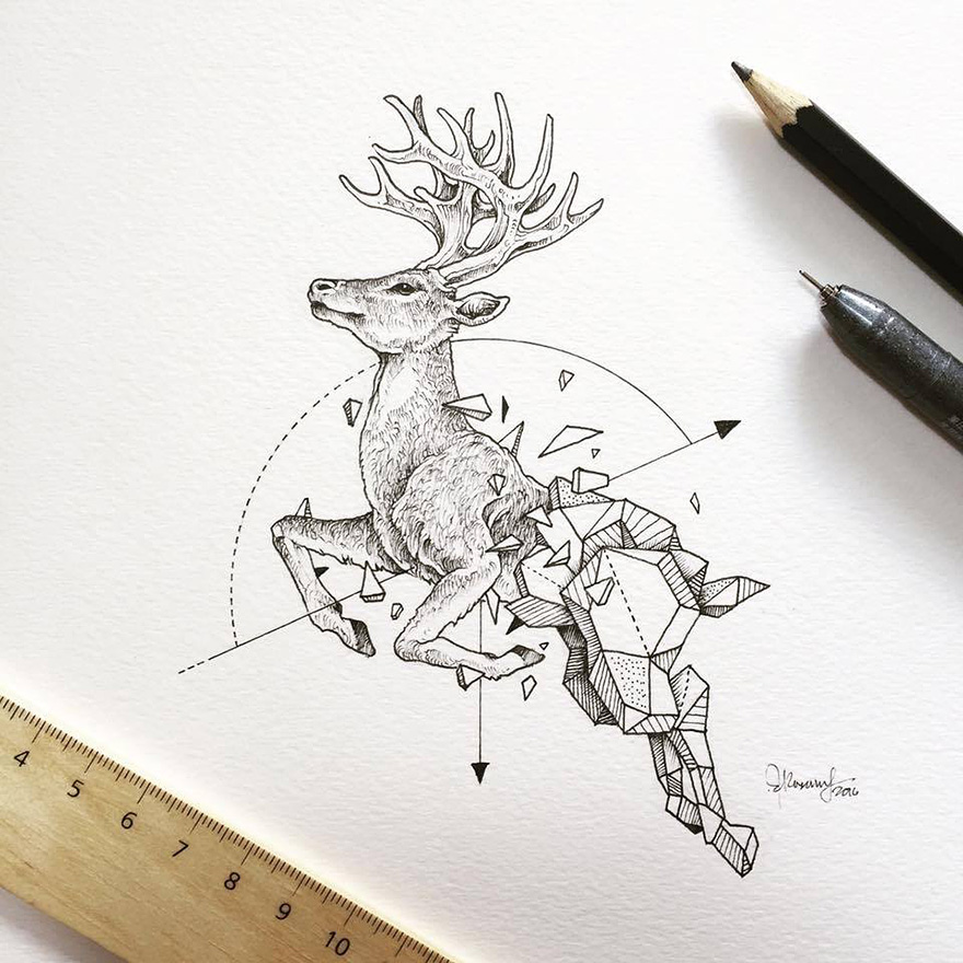 12-Stag-Kerby-Rosanes-Geometry-Coupled-with-Detailed-Drawings-of-Animals-www-designstack-co