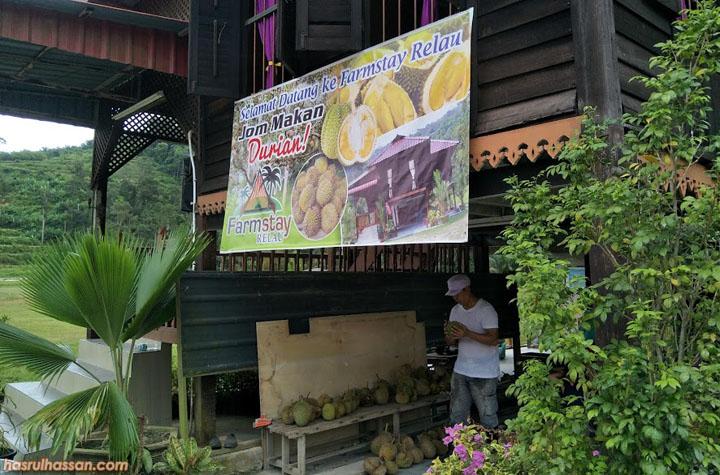Durian FarmStay Relau Bandar Baharu