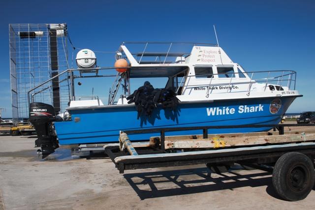 El barco de White Shark Cage Diving