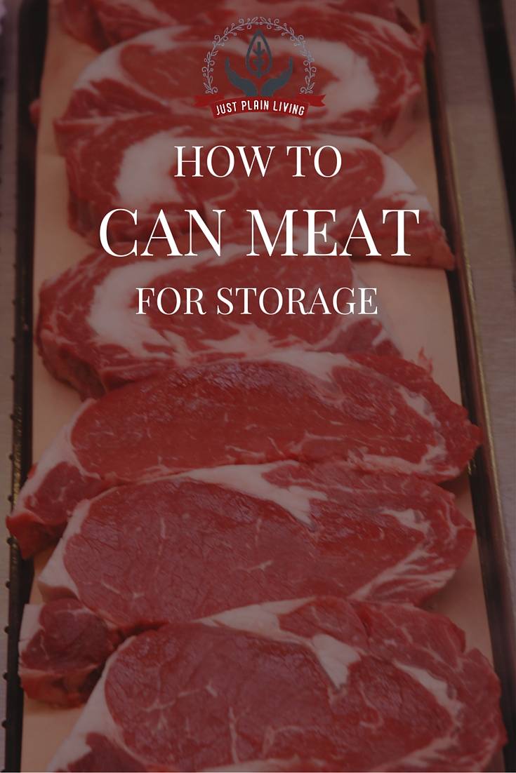 Don't limit yourself to jams and jellies. You can pressure can any kind of meat for long-term, convenient storage