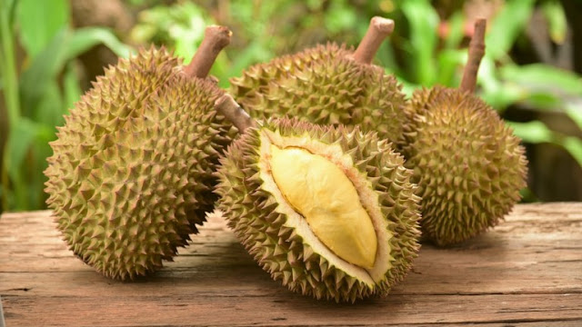 durian fruit,health benefits of durian,benefits of durian,durian fruit benefits,health benefits of durian fruit,durian benefits,durian,benefits of durian fruit,durian health benefits,benefit of durian fruit,king of fruit,fruit,benefits,benefit of durian,health benefits,benifits of durian,amazing health benefits of durian fruit,amazing benefits and uses of durian fruit