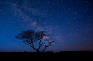 Đêm sao sáng