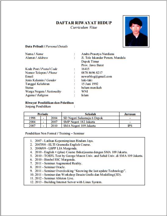 Contoh Resume Yang Lengkap Bahasa English Bulan Professional