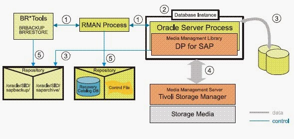 Integration of BR*Tools with Oracle RMAN