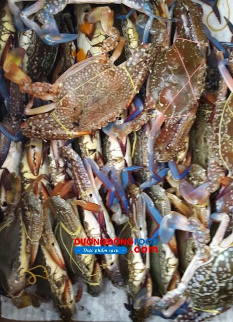 Đặc sản ghẹ xanh Hàm Ninh Phú Quốc