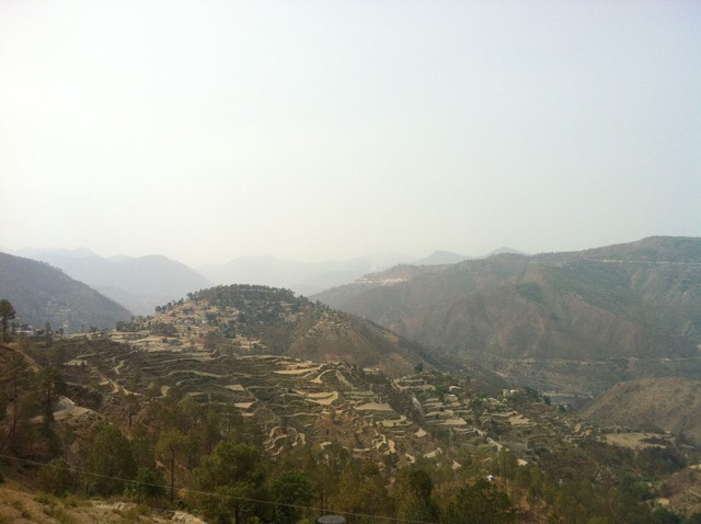 Landscape in Dwarahat