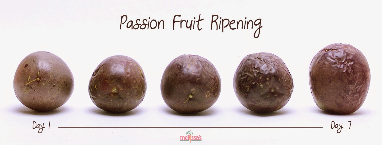 the fruits of the spirit how to eat passion fruit