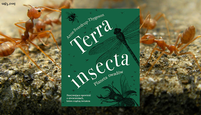 #391. Terra insecta - Anne Sverdrup-Thygeson