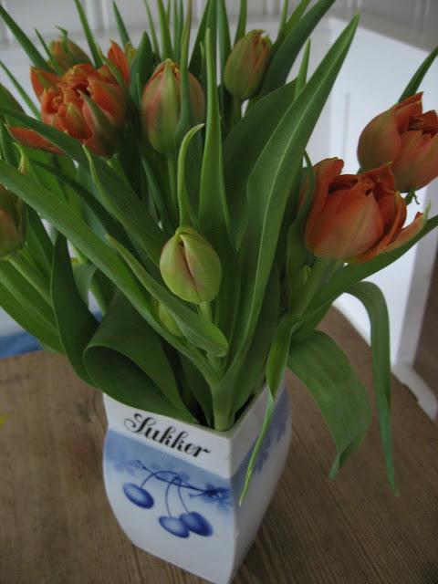 Tulipaner i porselenskrukke fra gamledager