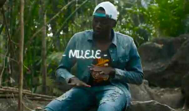 Download Video | Mr Mike - Milele