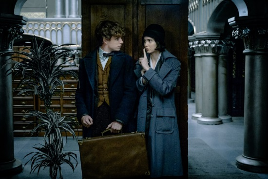 ANIMALES FANTÁSTICOS Y DONDE ENCONTRARLOS (FANTASTIC BEASTS AND WHERE TO FIND THEM)