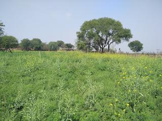Village-The Soul Of India,.Silsila Zindagi Ka