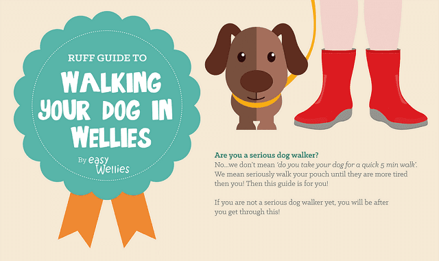 A Ruff Guide to Walking Your Dog in Wellies