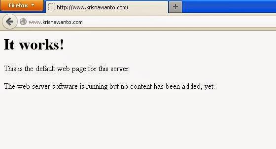 Cara Install DNS di Ubuntu server 12.04