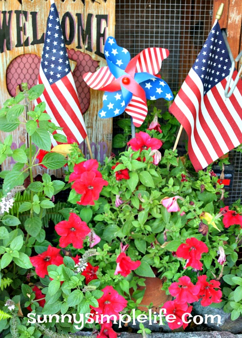 red petunias, July 4th decorating ideas
