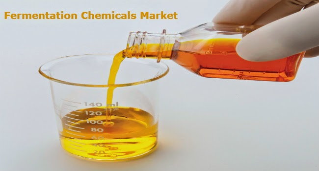 Fermentation Chemicals Market