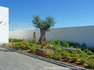 paisajistas en Badajoz