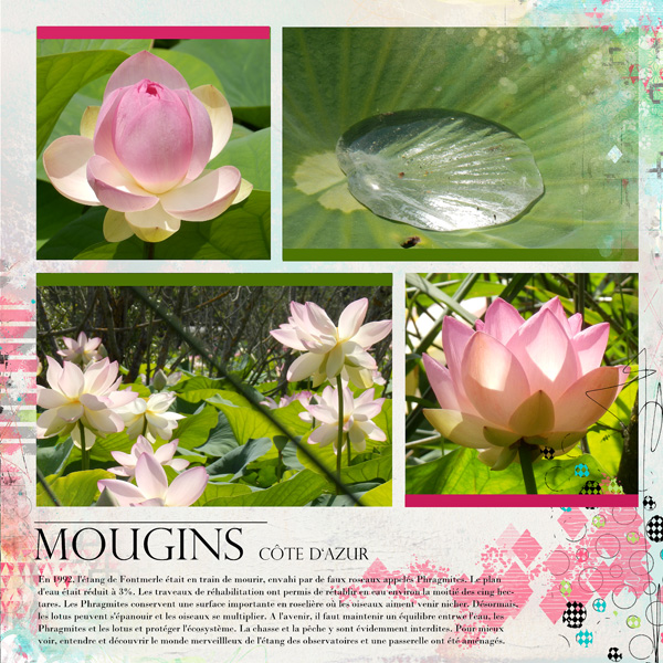 Clin d'oeil Design;NBK Design;Storybook templates
