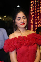 Poonam Kaur in lovely Transparent Red Gown at Zee Telugu Apsara Awards 2017 11.JPG