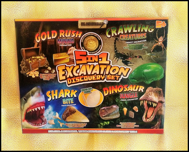 5 in 1 Excavation Discovery Set